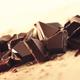 女性が確実に喜ぶ絶品チョコレート