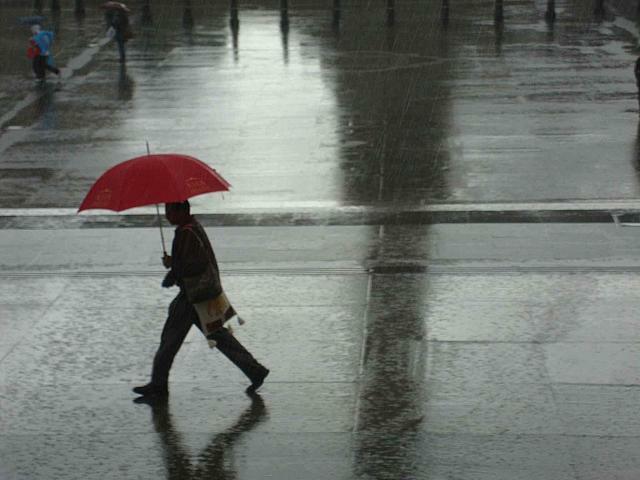 【雨の日も個性を】周りに差をつけるオシャレ傘10+1選