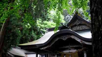 日本神話とその神々【古事記をベースにわかりやすく徹底解説!】