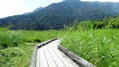 日帰りでも行ける!夏でも涼しい栃木の避暑地おすすめ10選