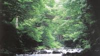 福井県の押さえておきたい定番観光スポット